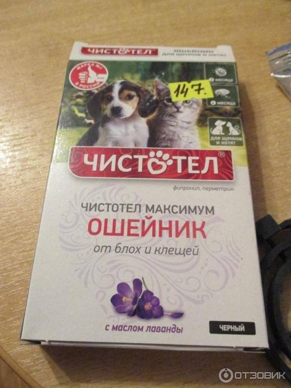 Как вывести блох у щенка: рекомендации эксперта и обзоры лучших средств