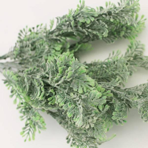 Полынь и травы от клопов в квартире