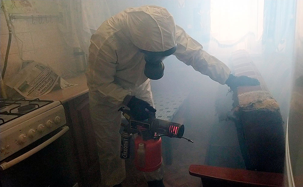 Как использовать холодный туман против тараканов