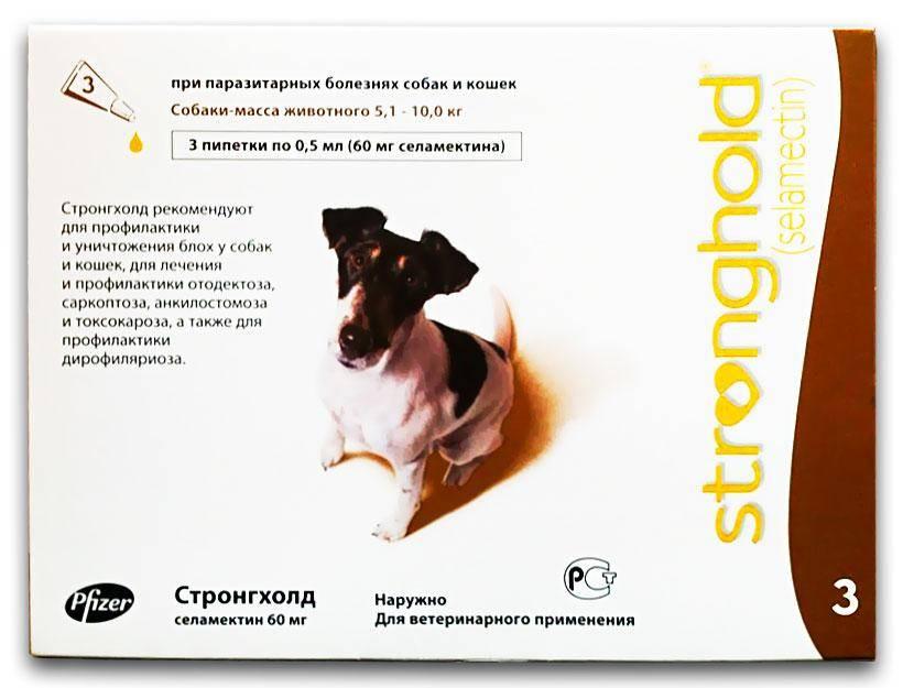 Стронгхолд для собак - инструкция по применению капель на холку, аналоги, цена, отзывы