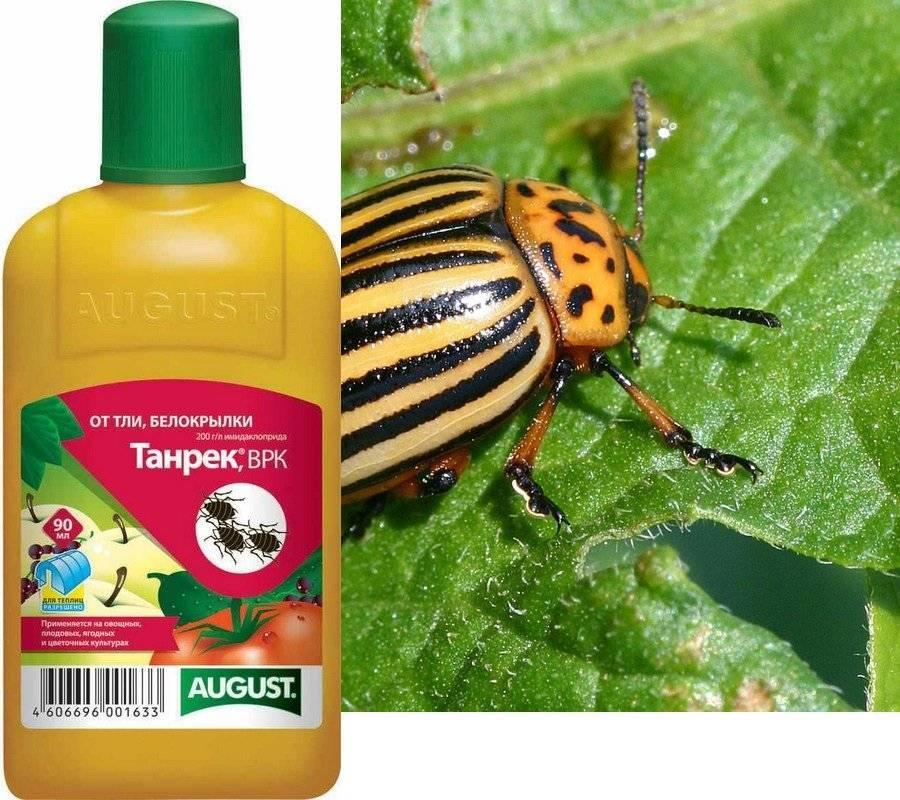 Инсектицид танрек