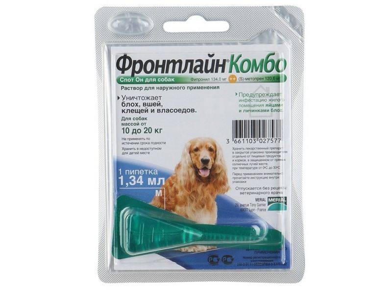 Фронтлайн для собак – описание, назначение, инструкция, побочные действия