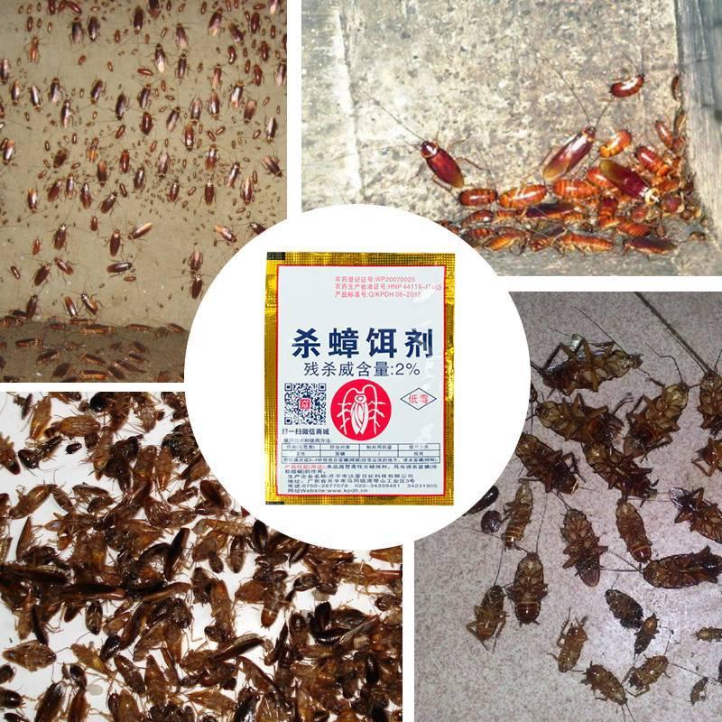 Как избавиться от тараканов. современные средства серии блокбастер xxi