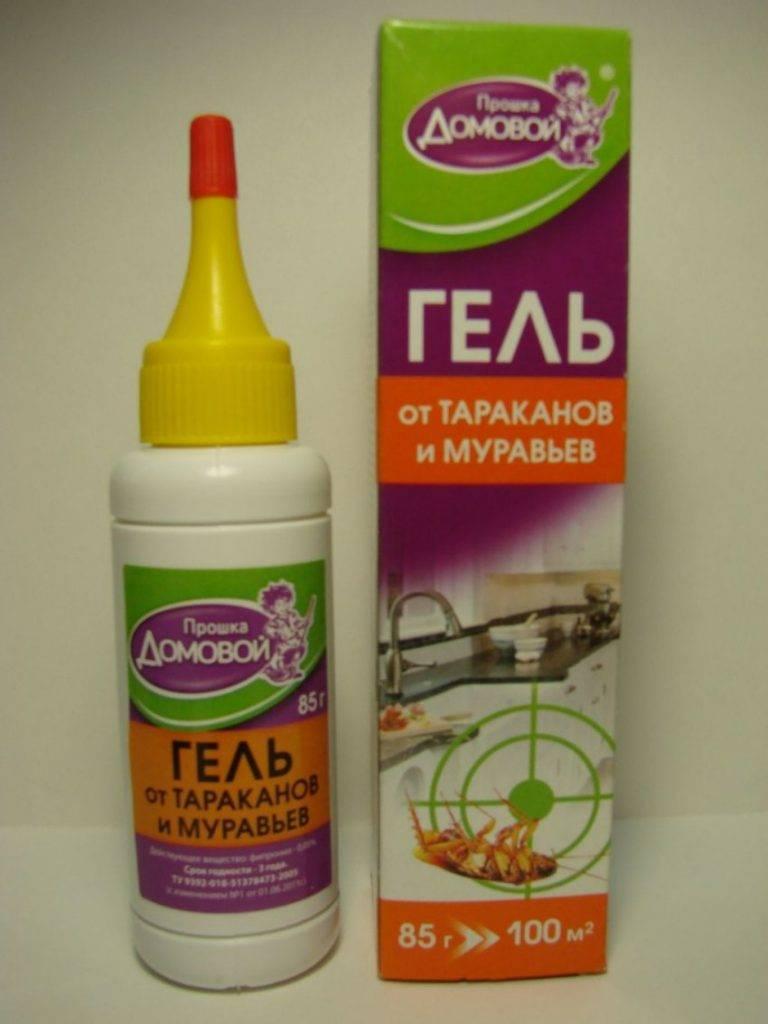 Эффективные средства от тараканов: гели, порошки, аэрозоли, ловушки