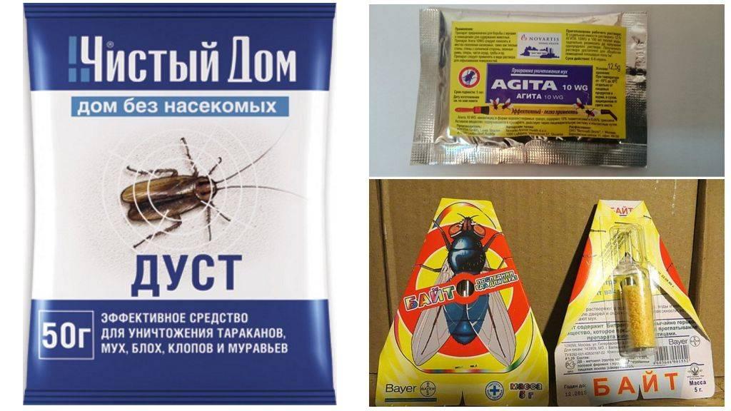 Как можно легко избавиться от мух?