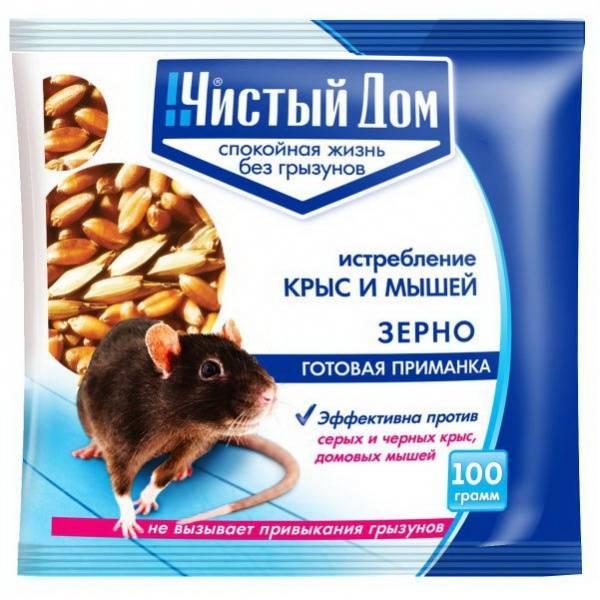 Какие какашки у мыши и крысы. крысы и мыши в доме! как бороться – проверенные способы уничтожения грызунов! мышиный сыпной тиф