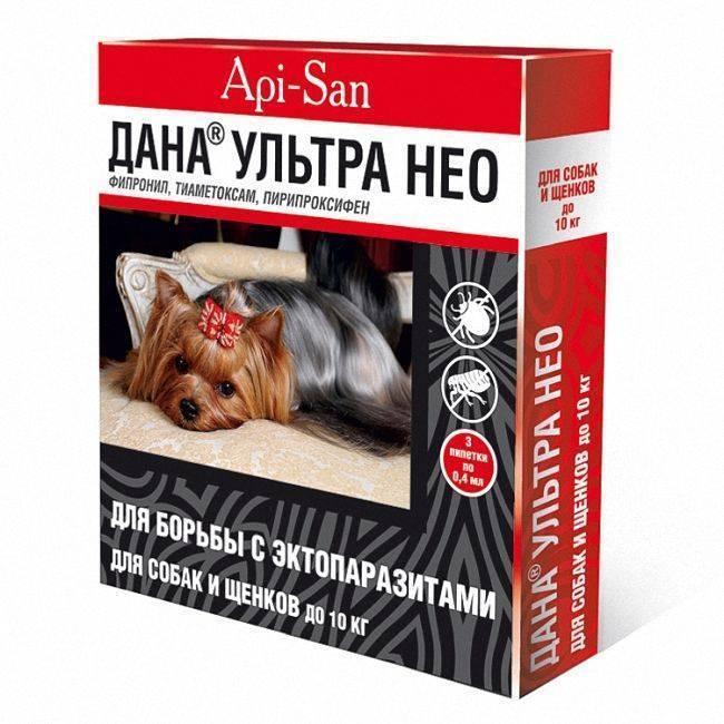 Apicenna капли на холку для собак и кошек дана спот-он флакон-капельница, фипронил