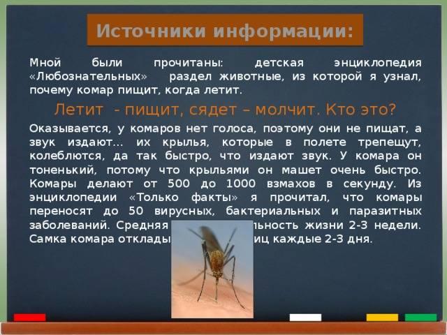 Почему комары пищат