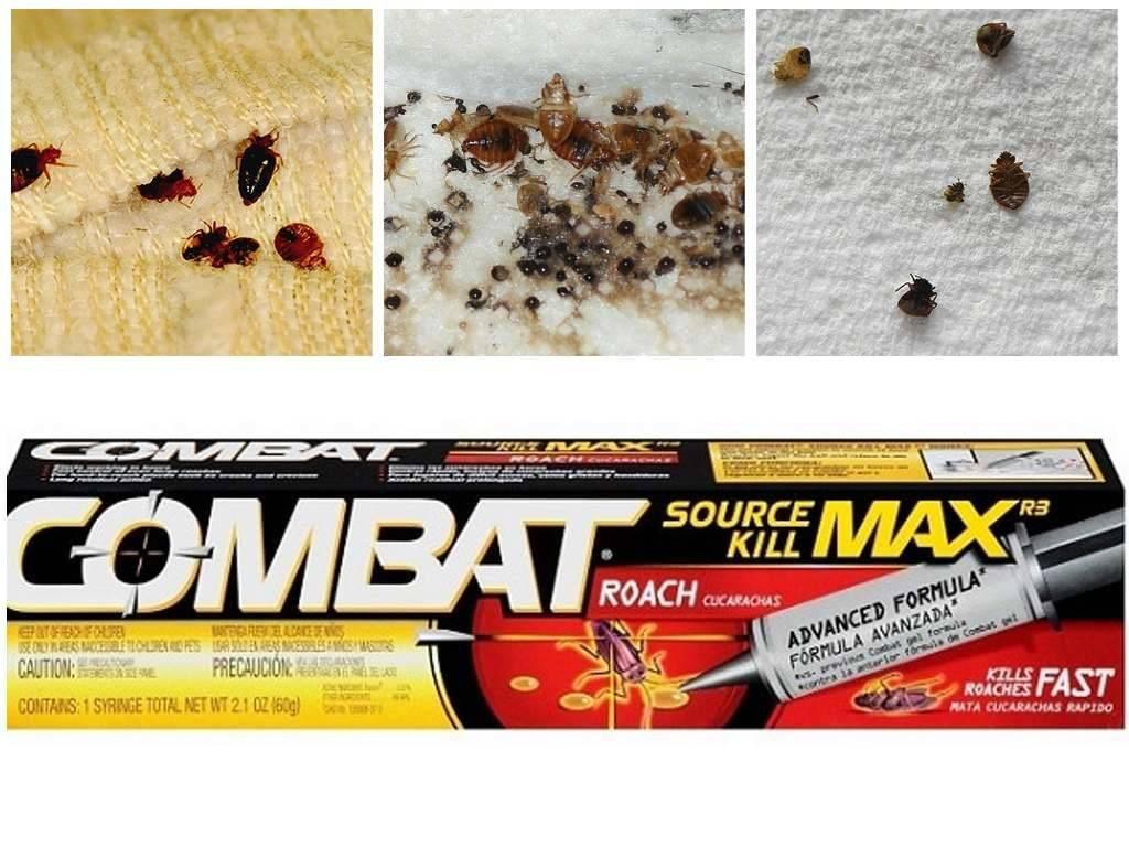 Средство комбат от тараканов: отзывы, инструкция и рекомендации по применению
