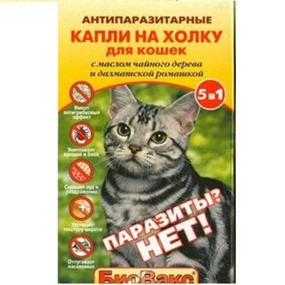 Средство для кошек от блох - эффективность, цены и отзывы