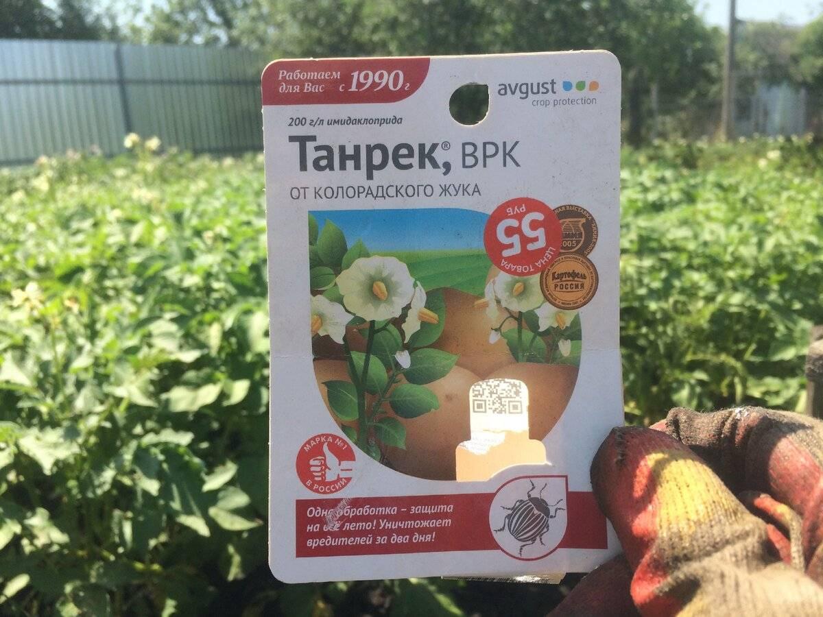 Обзор популярных препаратов против колорадского жука