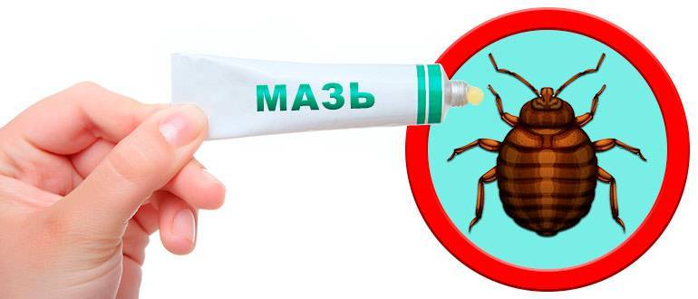 Мазь от укусов клопов: как выбрать и правильно применять, безопасно ли это средство для человека