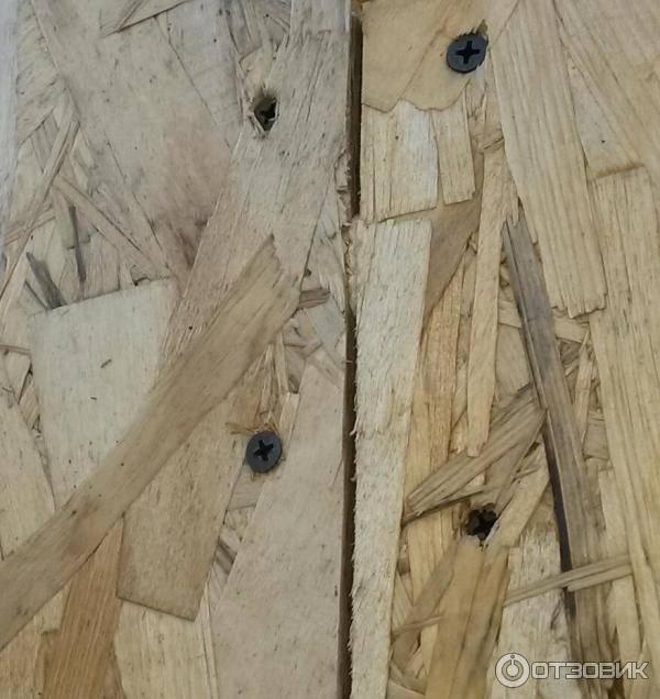 Дом из сип панелей и мыши – заводятся ли они и как с ними бороться?