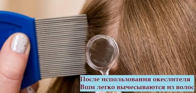 Быстрый, но опасный способ: как использовать дуст от вшей и гнид на голове, чтобы не отравиться ядом?