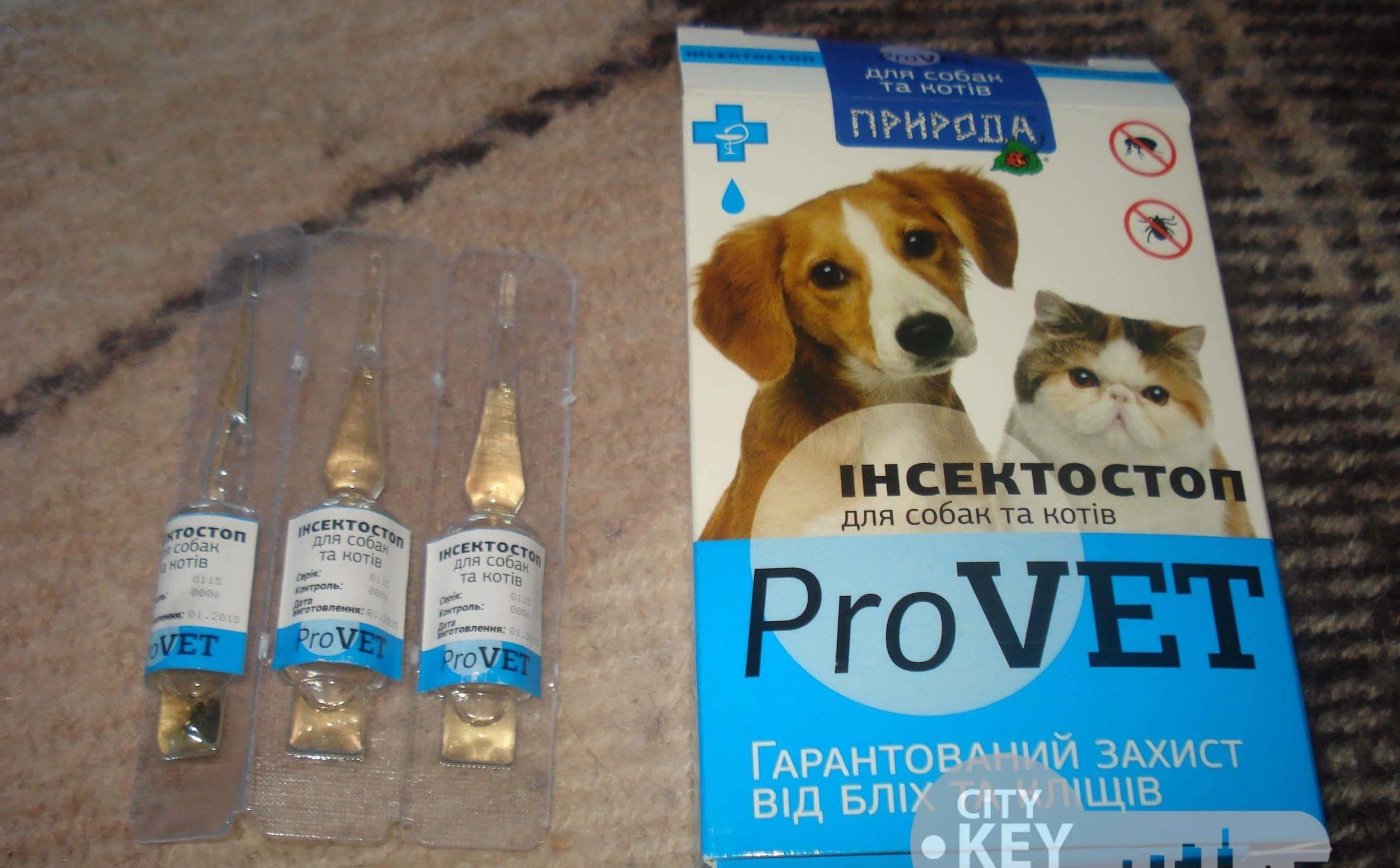 Прививки от клещей для собак: делают ли, виды и название вакцин, основные правила вакцинации