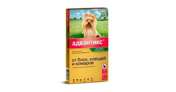 Капли адвантикс для собак: инструкция по применению и отзывы от клещей и блох