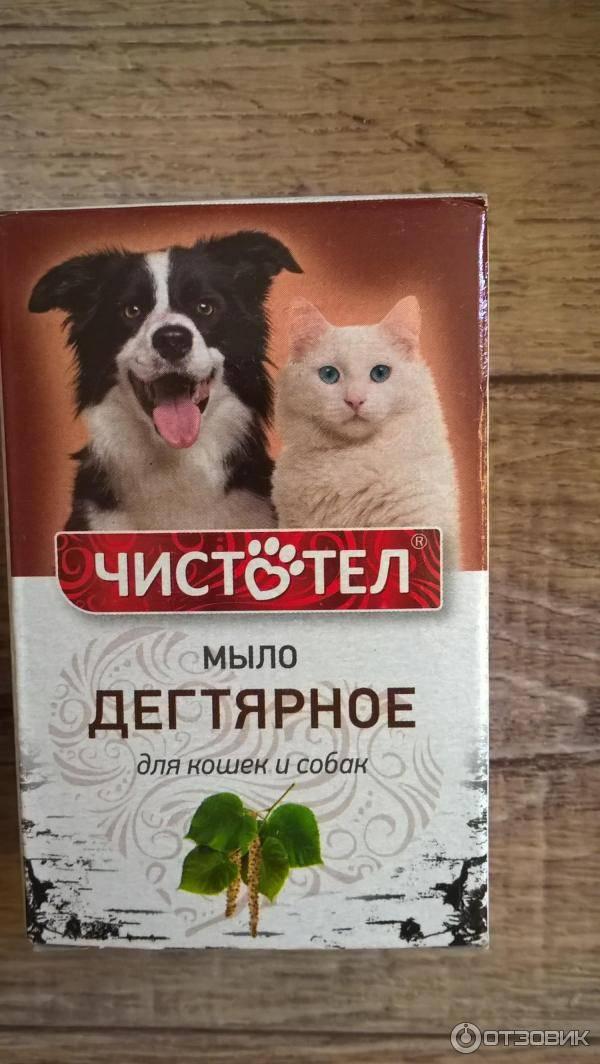 Дегтярное мыло от блох у кошек: инструкция по применению