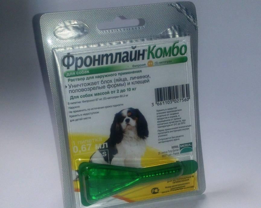 Фронтлайн капли и спрей для собак: инструкция по применению и отзывы