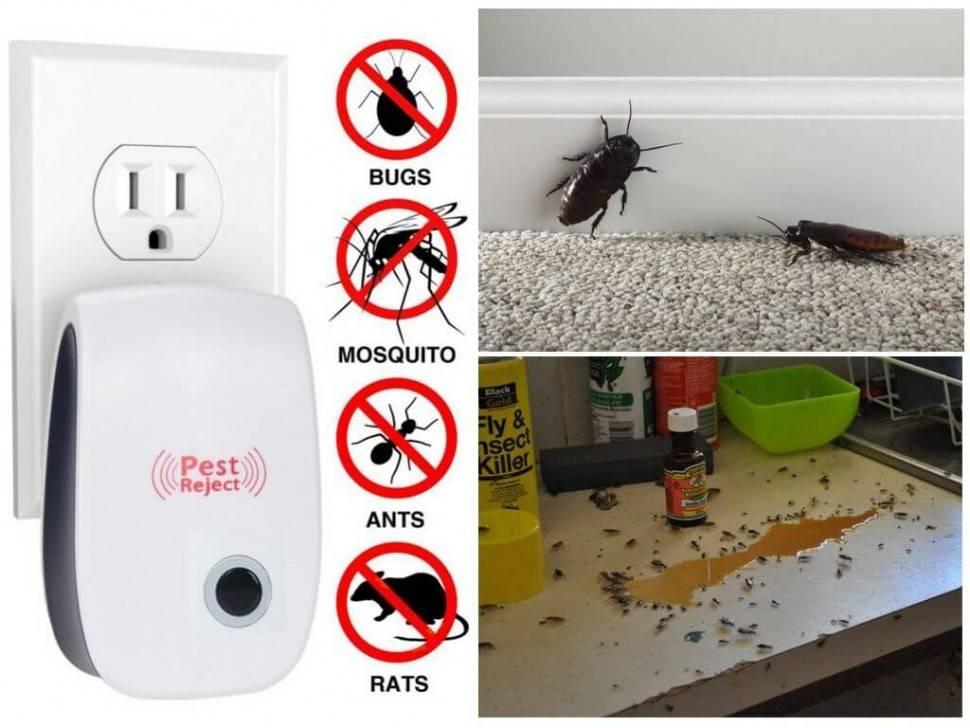 Ультразвуковой отпугиватель pest reject от клопов: инструкция, преимущества и недостатки