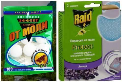 Как избавиться от моли в доме: какие народные и покупные средства помогут уничтожить насекомых в квартире