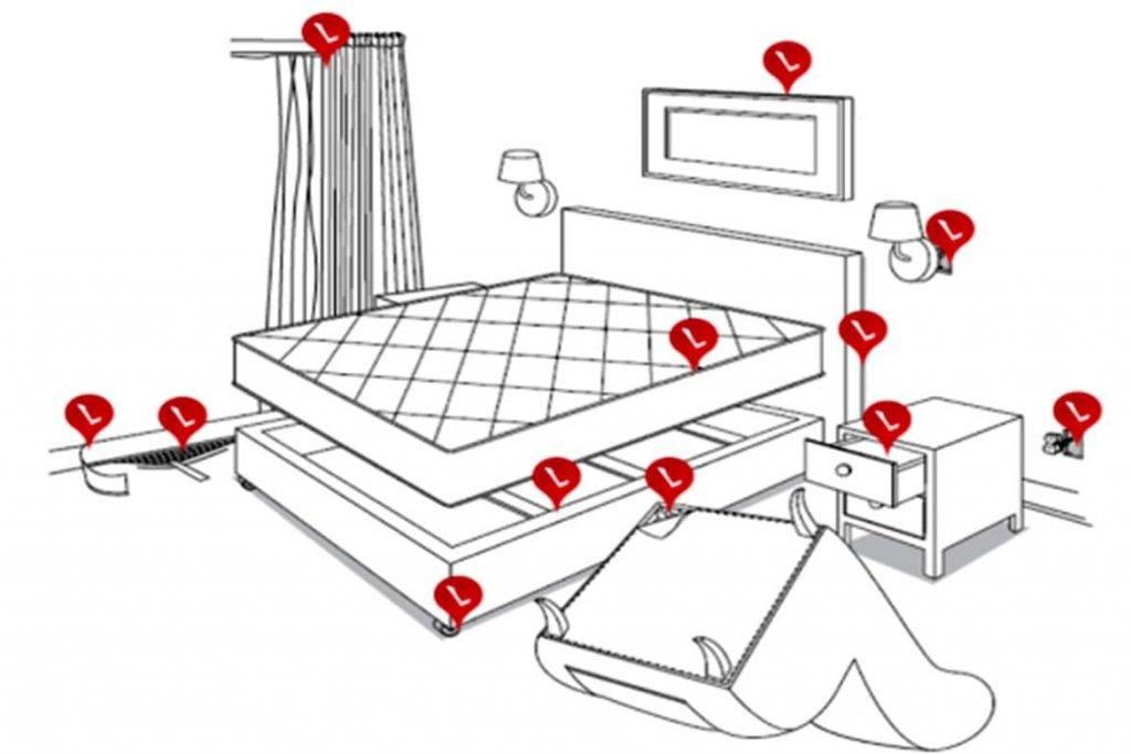 Обнаружение клопов: причины появления в квартире, методы