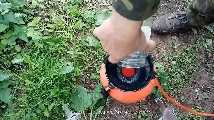 Нашатырный спирт от тли на даче: опрыскивание, обработка деревьев, сада, растений, народные средства