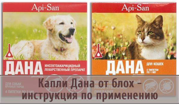 Дана Ультра Нео капли на холку для кошек и котят: инструкция и отзывы