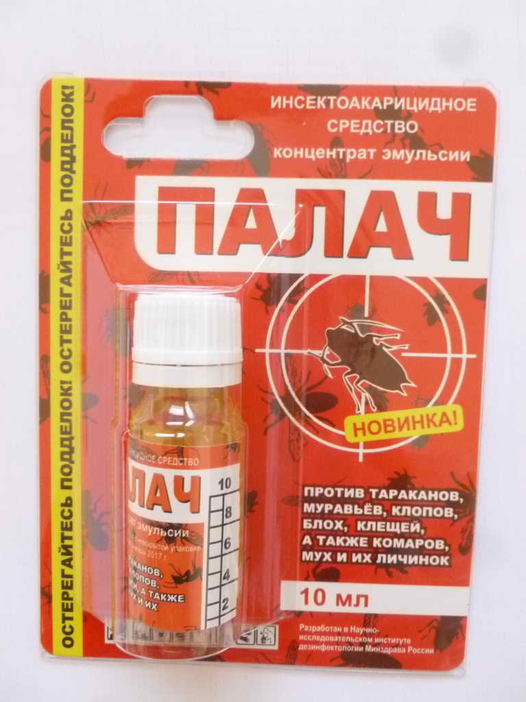 Как применять средство от клопов палач для уничтожения насекомых
