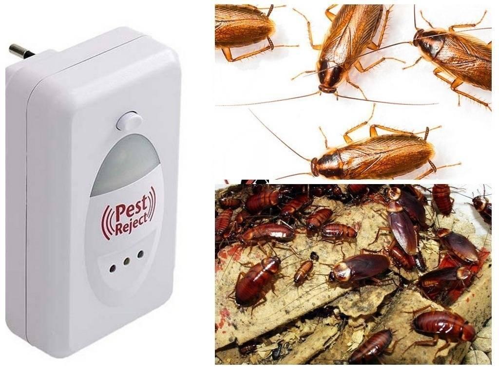 Ультразвуковой отпугиватель от тараканов pest reject