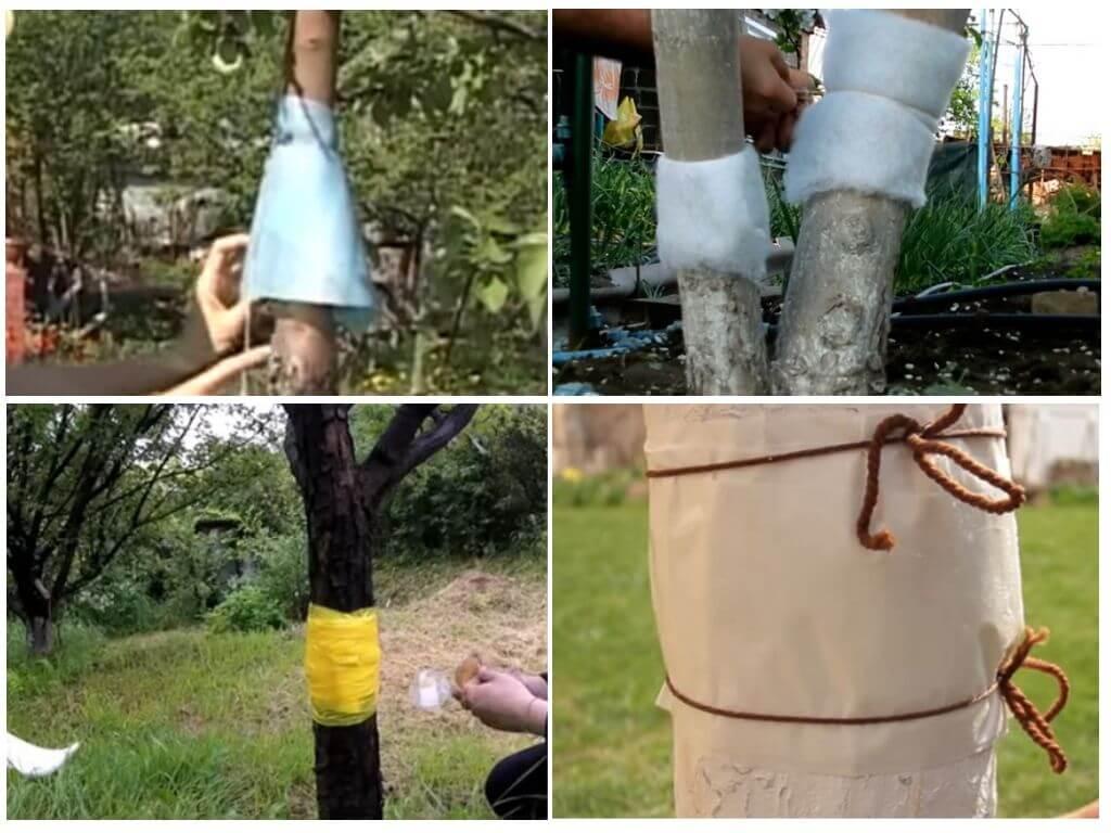Ловчий пояс для деревьев - какой лучше и как правильно сделать?