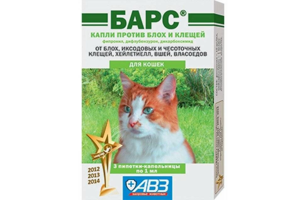 Обзор и способы применения капель и таблеток против клещей для кошки