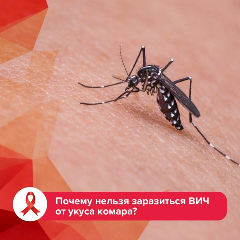Может ли комар заразить спидом, вич или другими болезнями