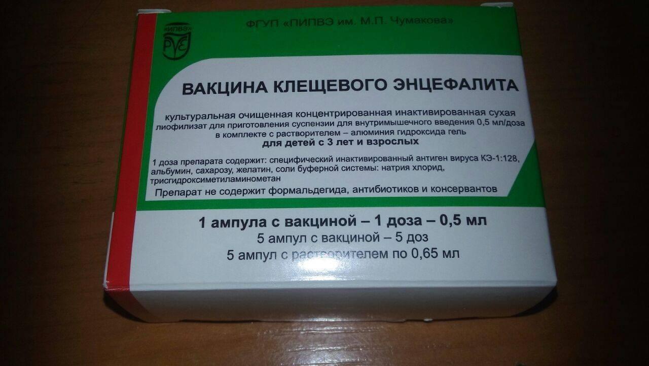 Прививка от клещевого энцефалита — лучший профилактический метод