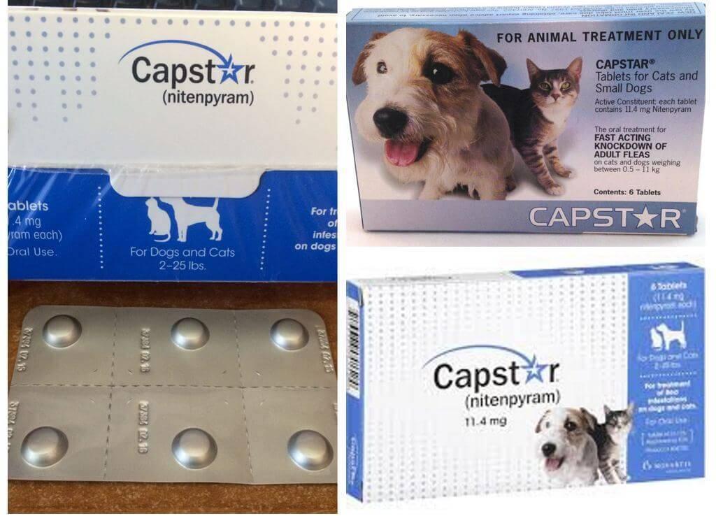 Жевательные таблетки фронтлайн нексгард от блох и клещей у собак