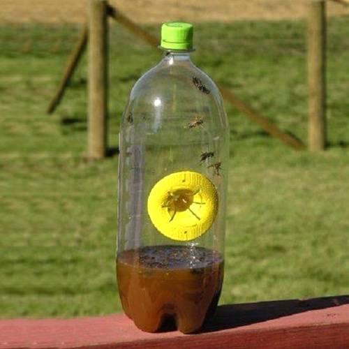 Ловушка для ос из пластиковой бутылки своими руками: 5 лучших приманок