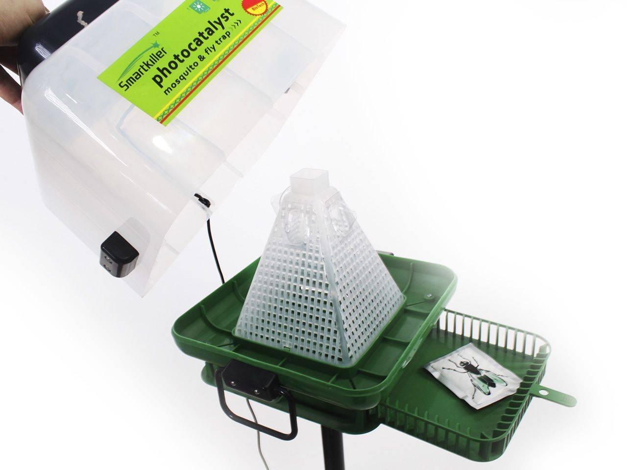 Как избавиться от мух в квартире и частном доме — обзор самых действенных методов