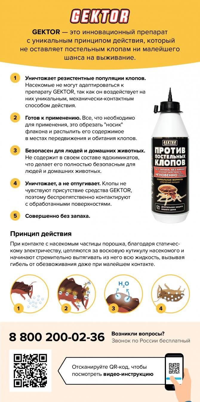 Средства от клопов без запаха - самые эффективные в квартире