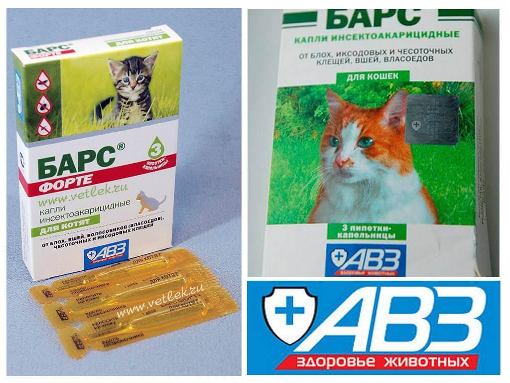 Способ применения капель барс форте для кошки для борьбы с клещами и блохами