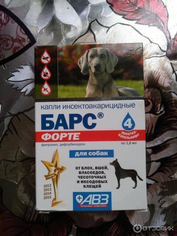 Капли барс для собак от блох: инструкция по применению