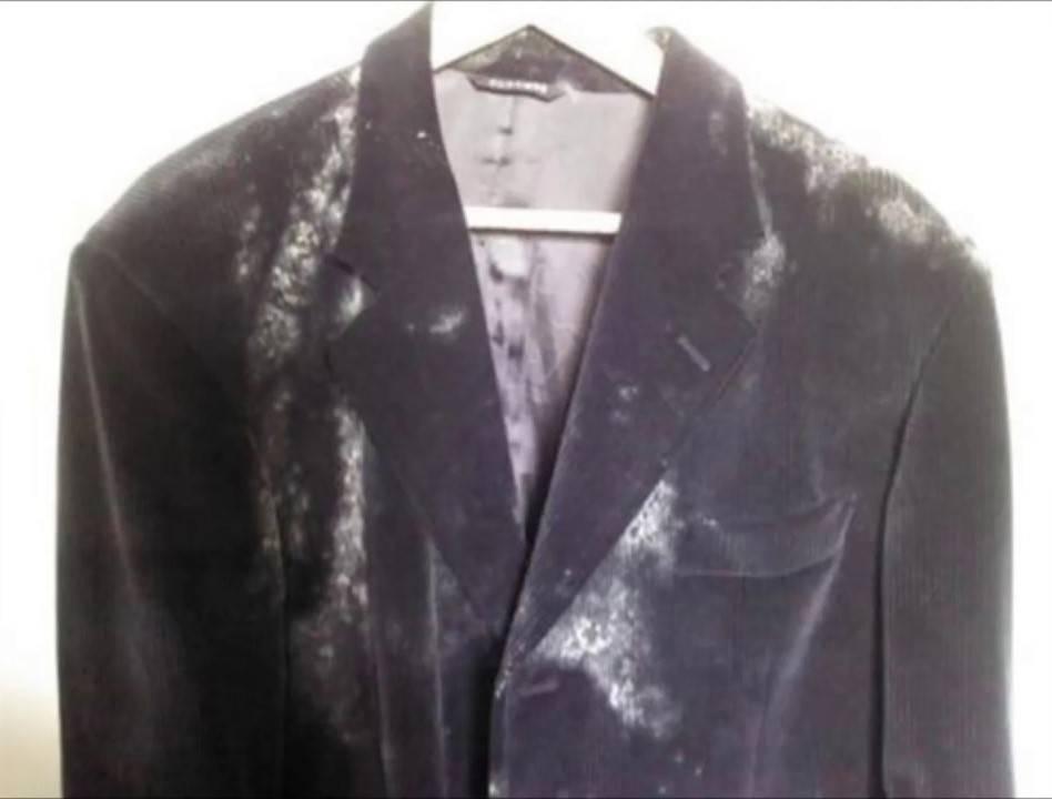 Как вывести плесень на одежде