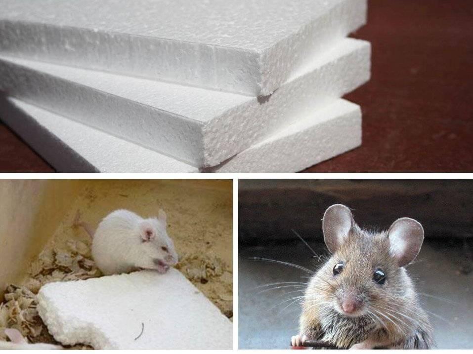 Утеплитель который не грызут мыши | всё об отоплении
