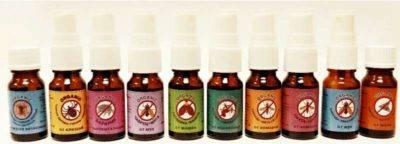 Выбираем лучше эфирное масло против блох в квартире: лаванда, полынь, эвкалипт, можжевельник, мелисса и другие