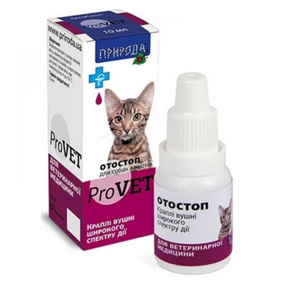 Капли от ушных клещей для кошек: как правильно выбрать средство?