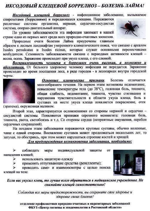 Симптомы и лечение клещевого боррелиоза