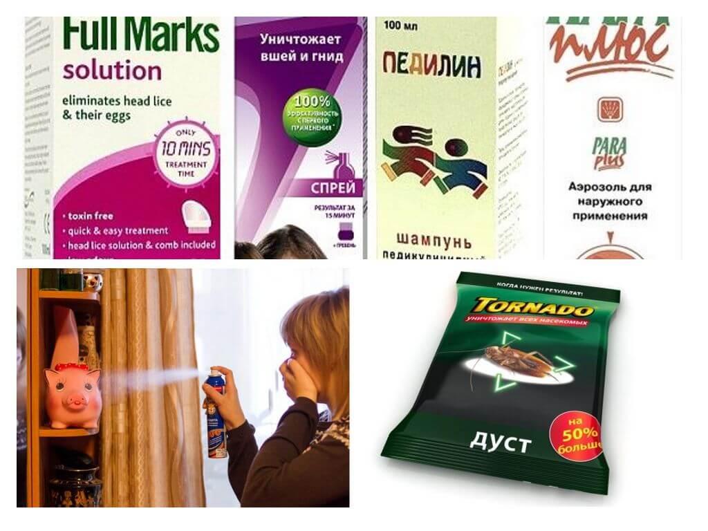Народные средства от вшей и гнид (педикулеза): полезные рецепты для приготовления в домашних условиях, отзывы