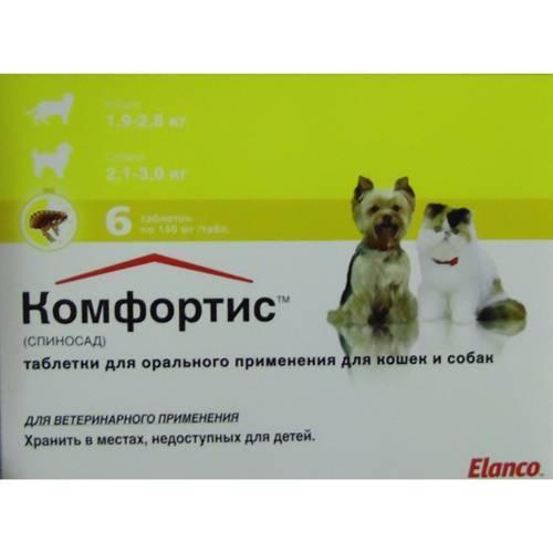 Таблетки от блох для кошек – эффективное решение для борьбы с паразитами