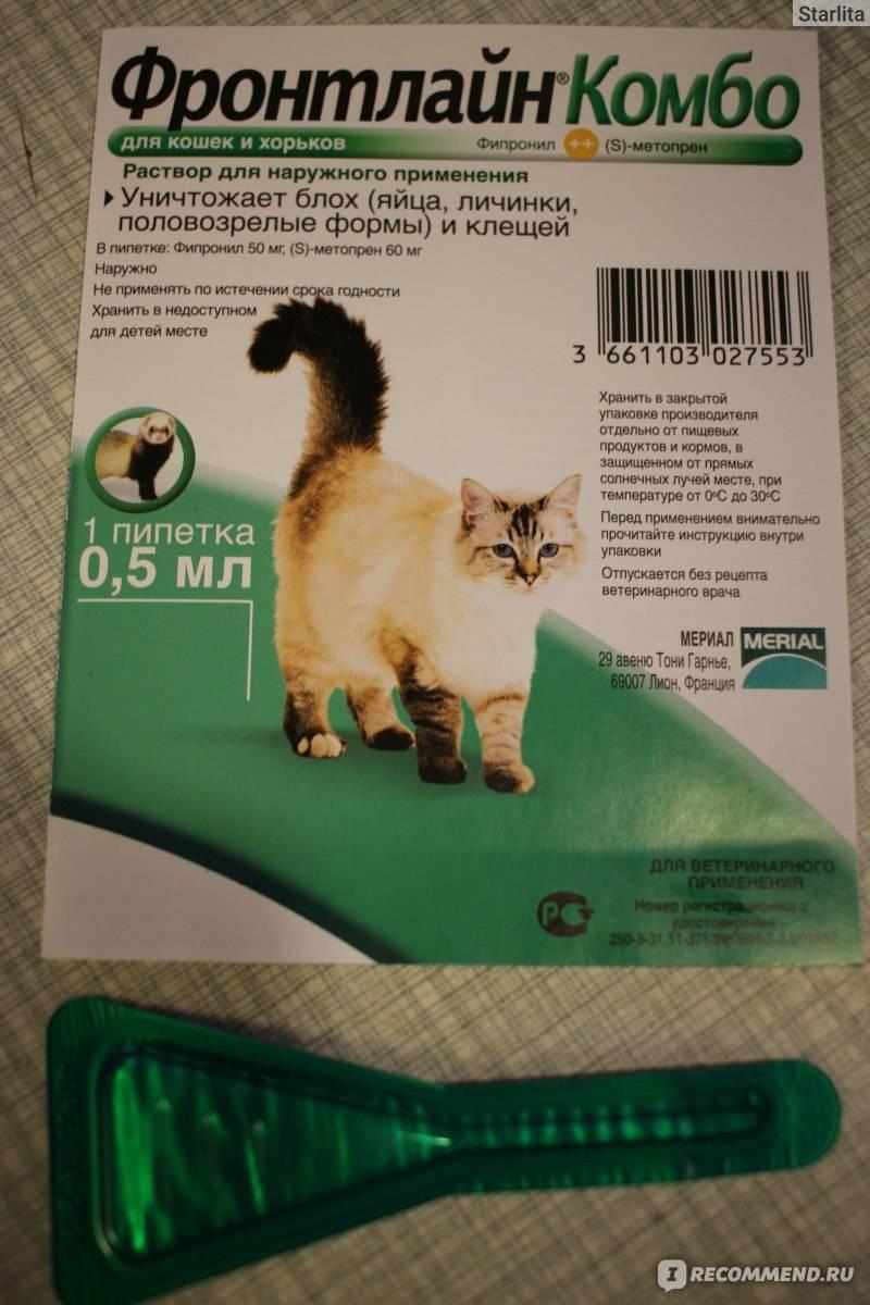 """""""адвантейдж"""" (капли на холку): инструкция по применению, отзывы. капли от блох для кошек"""