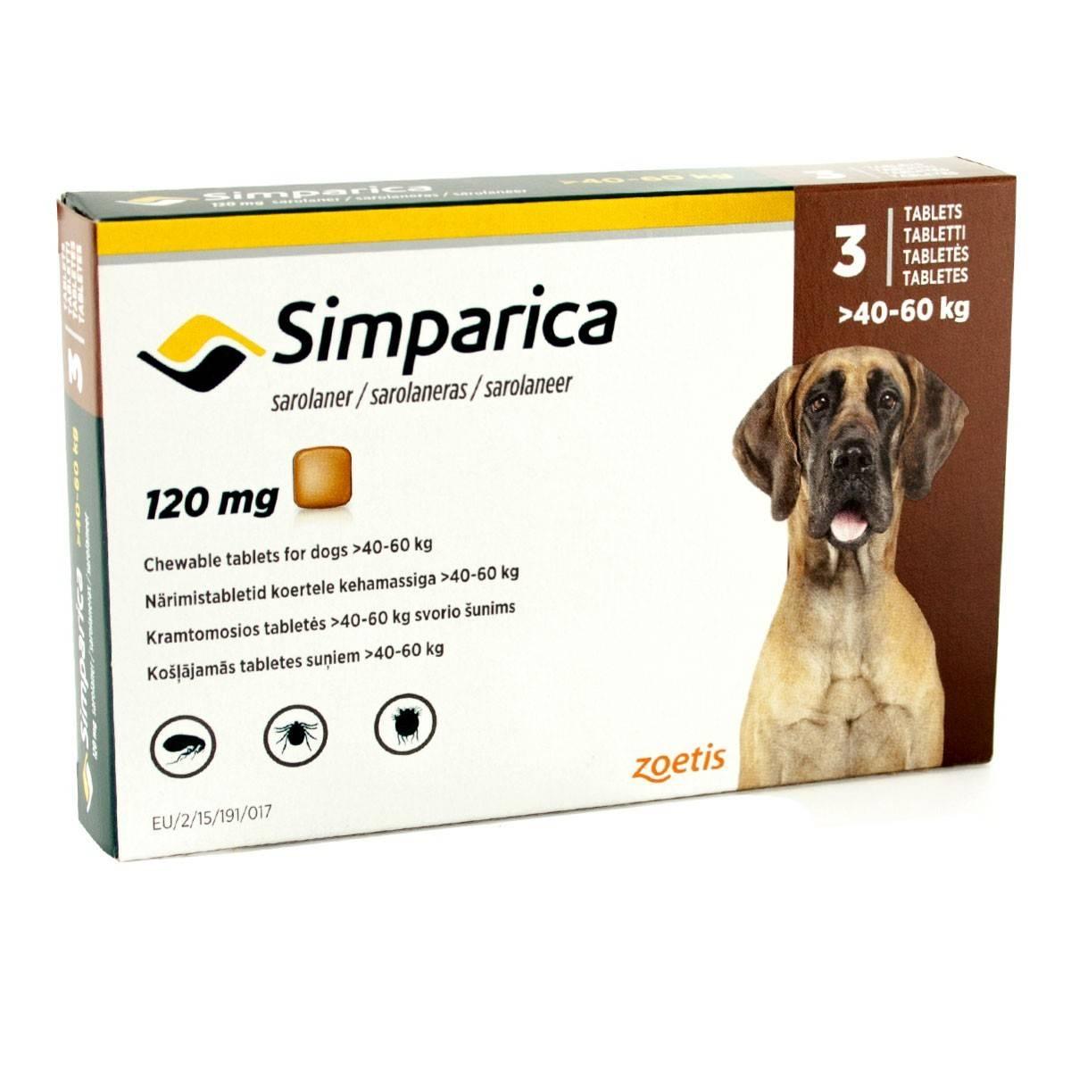 Таблетки «Симпарика» – эффективное лекарство от блох и клещей