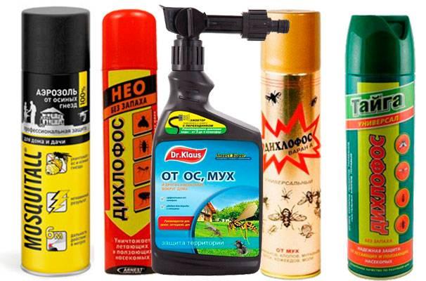Средство от ос: эффективные препараты для борьбы с насекомыми