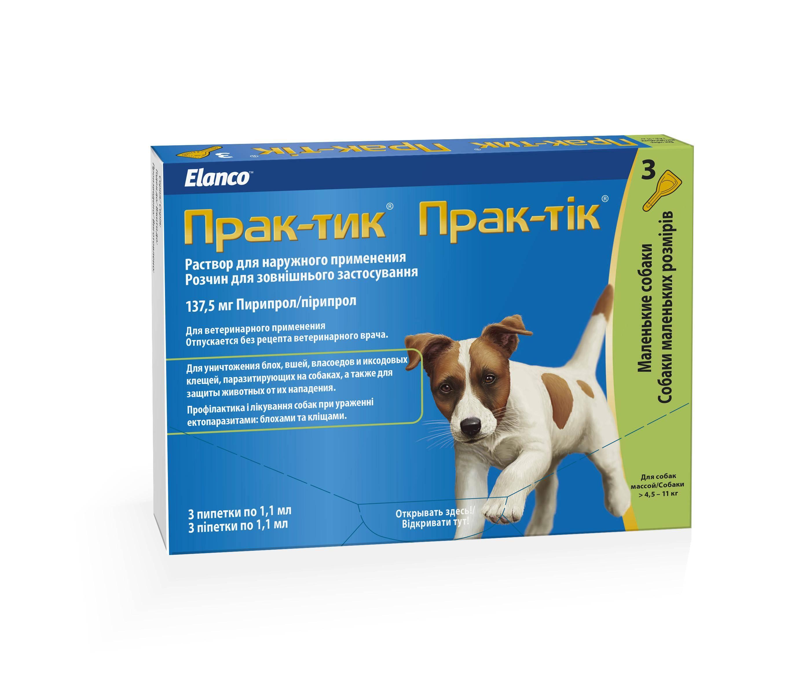 Капли для собак от клещей и блох - как обрабатывать и использовать